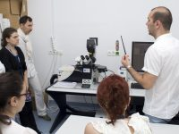 Course and laboratory microscopy (15/25)